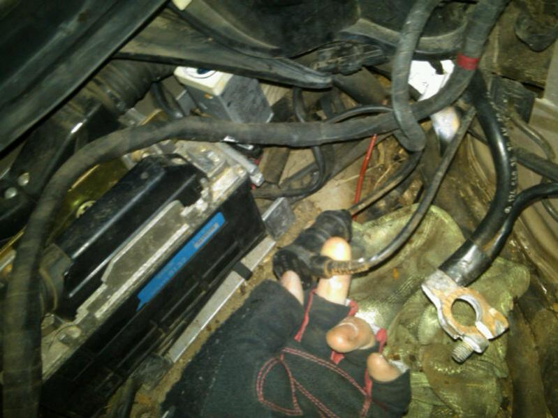 W M Wiring Harness on battery harness, fall protection harness, suspension harness, cable harness, dog harness, electrical harness, safety harness, obd0 to obd1 conversion harness, oxygen sensor extension harness, nakamichi harness, maxi-seal harness, radio harness, alpine stereo harness, engine harness, pony harness, pet harness, amp bypass harness,