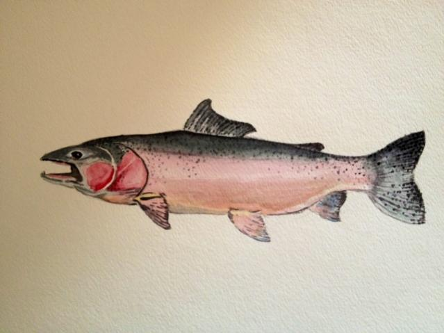 Steelhead Salmon Painting http://www.peachparts.com/shopforum/open-discussion/332517-fish-paintings.html